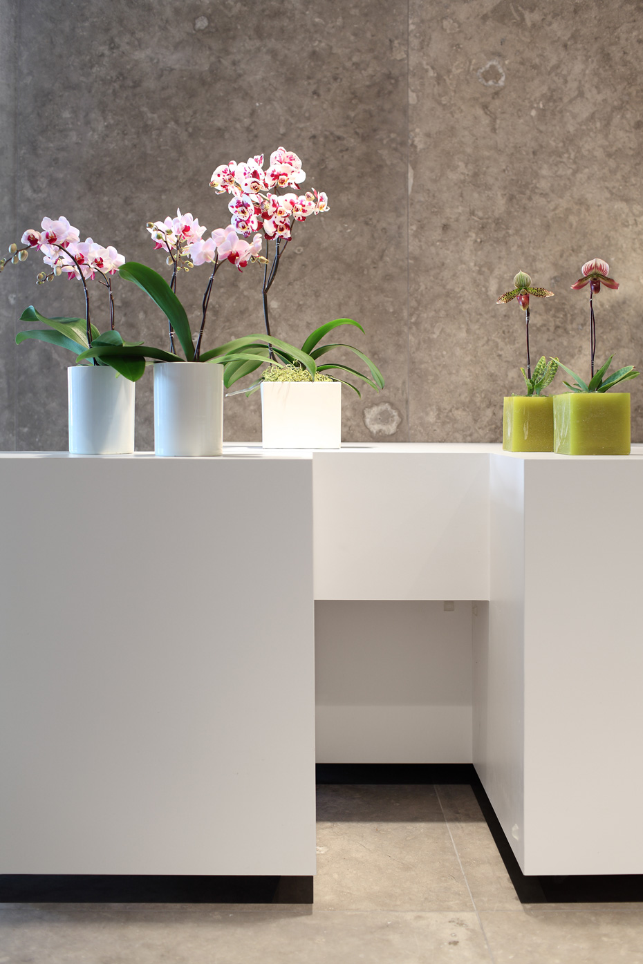 office of mcfarlane biggar architects + designers, Vancouver, Granville Island Florist